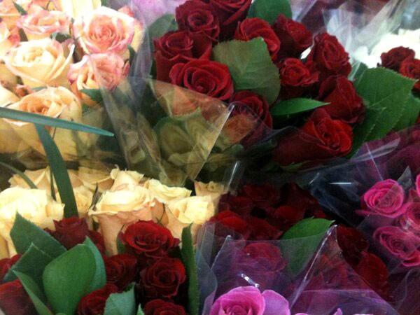 Valentines Day (Kevin Coriolan)